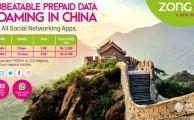 Zong-DataRoamingChina