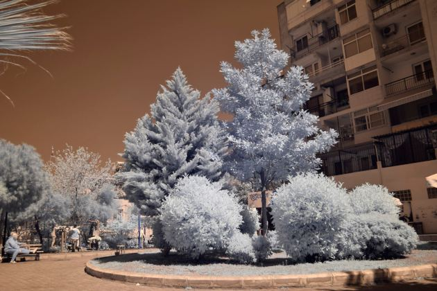 665nm sample infrared photo