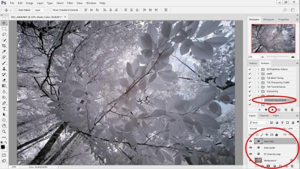 Kızılötesi fotoğraf işleme