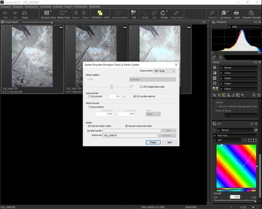 Capture NX-D TIFF kaydetme