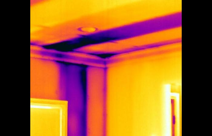 Missing insuation 3 0 - Building Infrared Inspection
