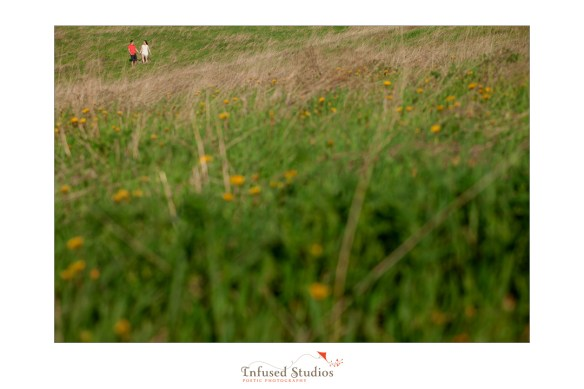 St Albert wedding & engagement photographers :: Rosanna + Chris' engagement field vista