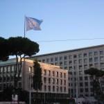 Prácticas remuneradas en la FAO-Roma