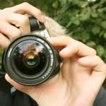 Beca de estancia en La Fragua para fotógrafos