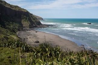 Muriwai Beach South