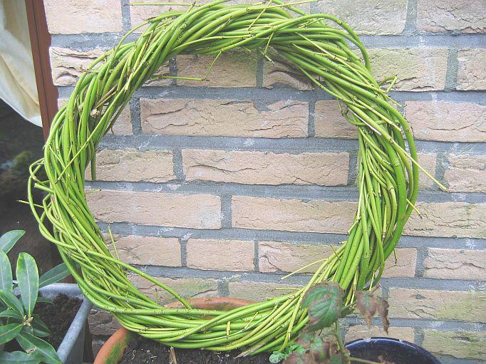 Handmade Cornus wreath by Ingeborg van Zuiden