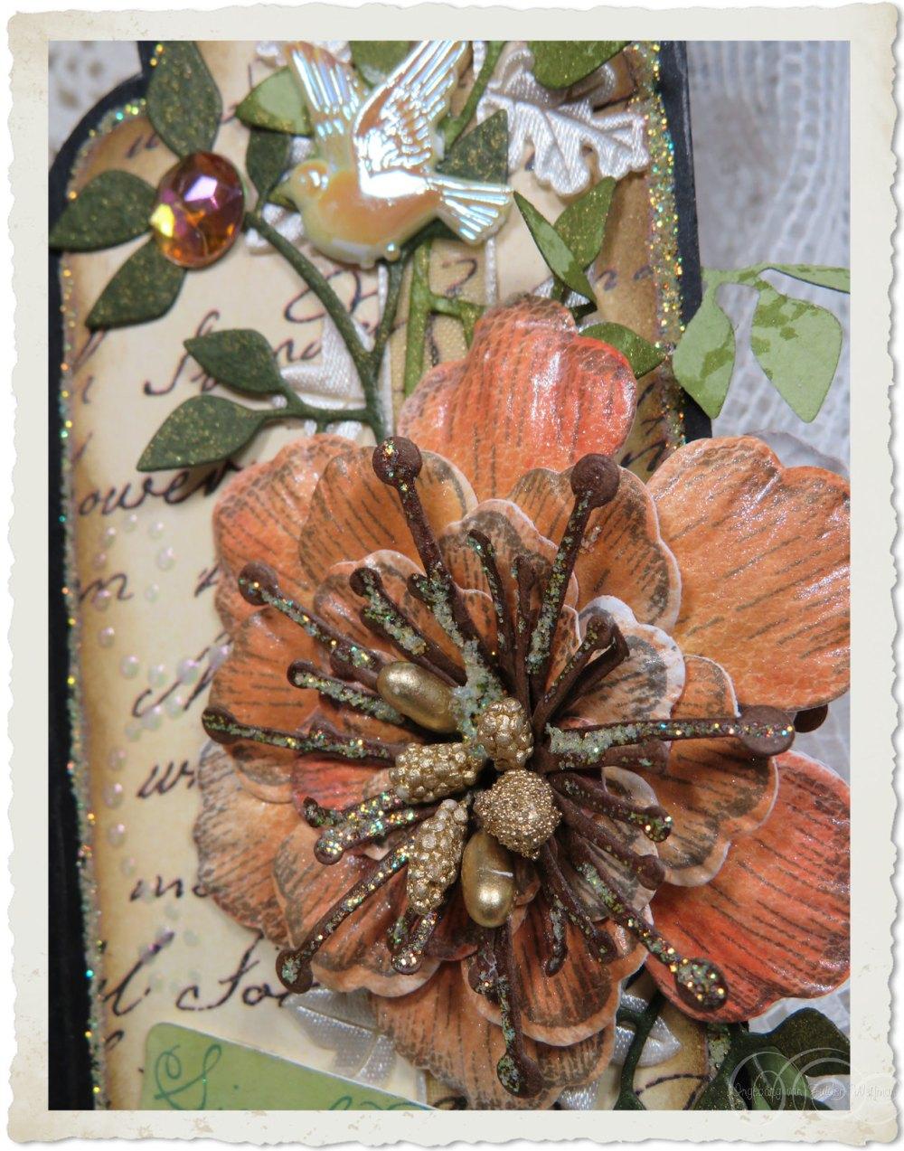 Arianna blooms by Ingeborg van Zuiden