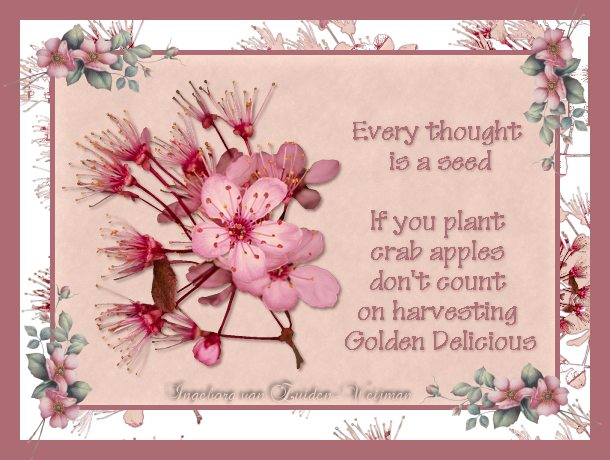 Seed thought quote