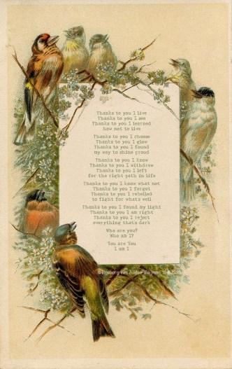 Poetry by Ingeborg van Zuiden - Thanks to you