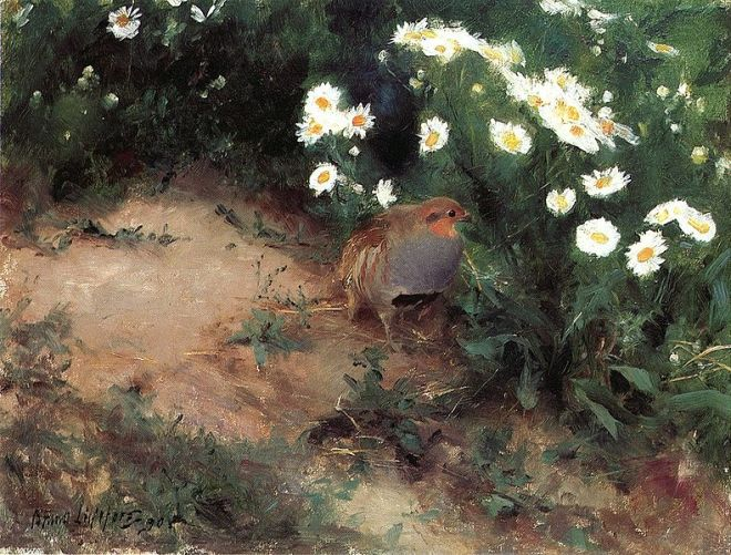 """Partridge with Daisies"" by Bruno Liljefors"
