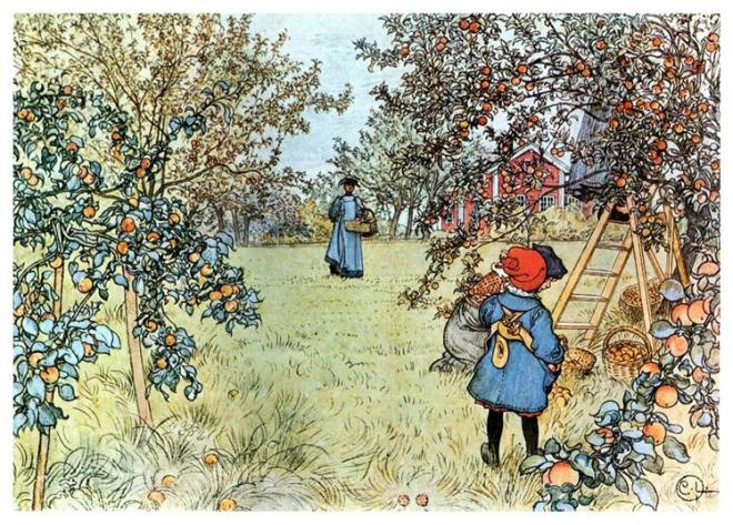 carl.larsson.apple-harvest
