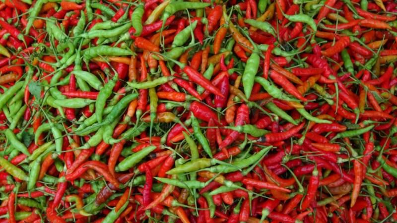 Chili!!!