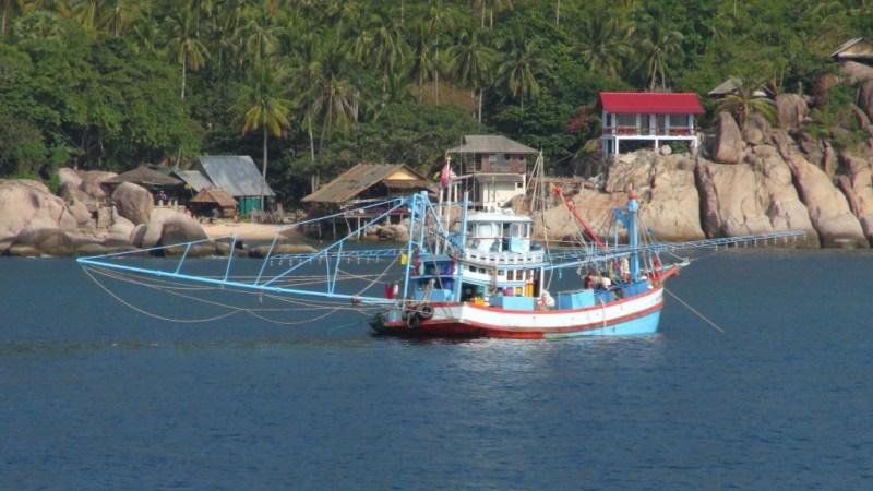 Koh Tao, thailand, dykning, fiskerbåd