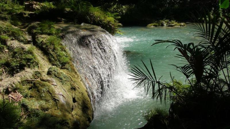 filippinerne, scooter, siquijor island, strand, paradis, palmer, vandfald