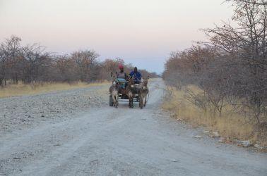 9. Gweta & Makgadikgadi Pans (14)