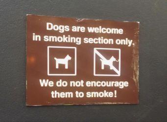 Humpback, whales, australien, hundeskilt, dog sign