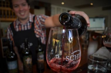 Australien, vin smagning, barossa valley, wine tasting, rødvin, red