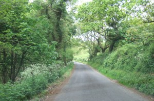 The road down into Tyneham.