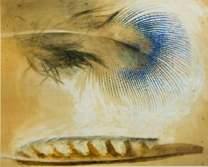 John Ruskin. Study of a peacock feather and another feather.