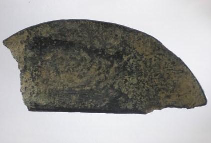 Schlitzrose Fragment 1-2