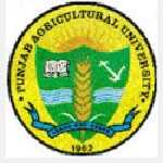 Punjab Agriculture University recruitment 2016 Assistant 4 posts