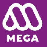 MEGA company recruitment 2016 assistant general manager 5 posts