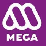 MEGA company recruitment 2016 assistant general manager 5 posts