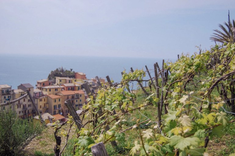 My complete guide to Cinque Terre
