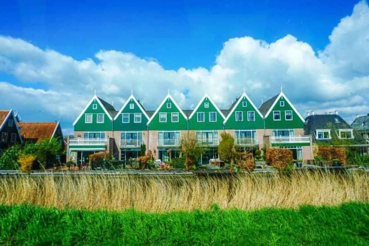 Finding the best Tulip fields near Amsterdam