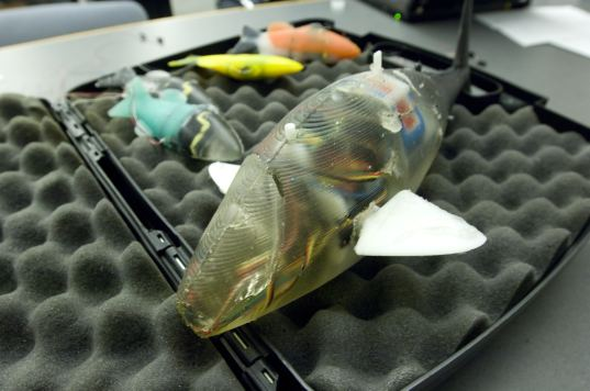 robofish, mit, robot, fish