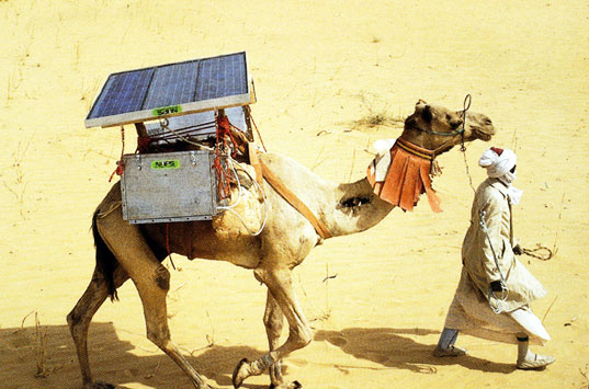 sustainable design, green design, solar power, solar refrigerator camel, design for health, sustainable transportation