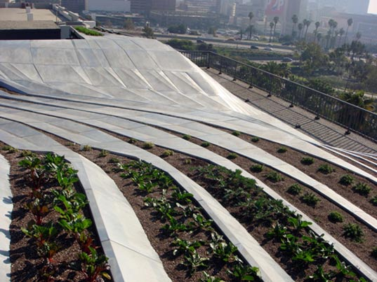 synthe prototype green roof, sustainable design, gardening, urban development, los angeles, urban farming, southern california institute of architecture, alexis rochas, green building