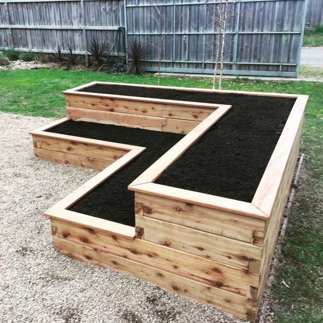 Vegetable Garden Box Layout