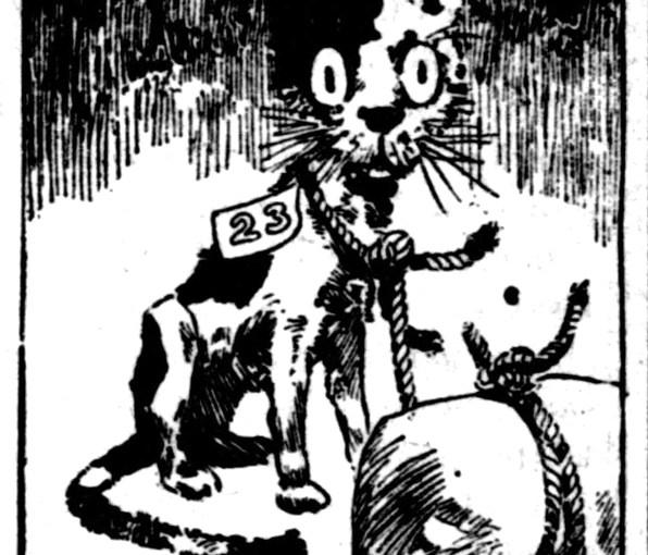 A Cat-Losing, 1888