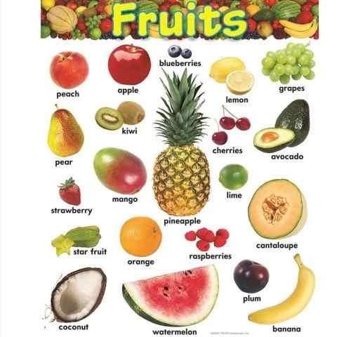 Fruit names with pictures hindi english