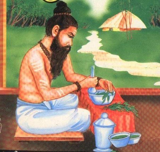 சித்த வைத்தியர்