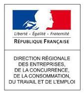 http://idf.direccte.gouv.fr/Seine-Saint-Denis