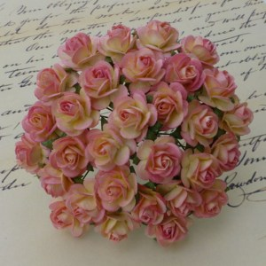Wild Orchid Crafts 2-Tone Champagne Pink Mulberry Paper Open Roses