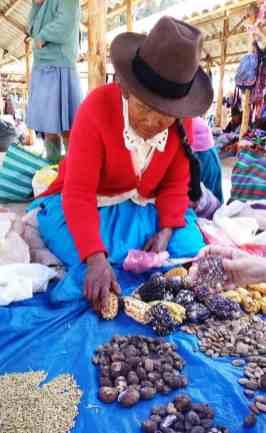 Donna peruviana vende tuberi al mercato