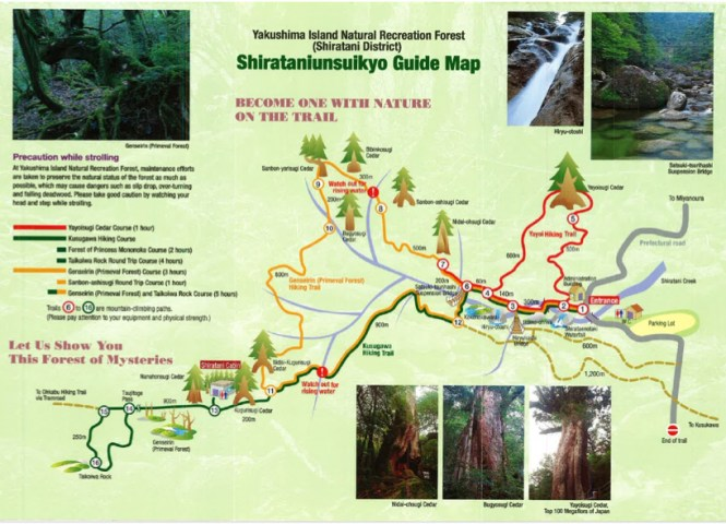 yakushima japan trail map