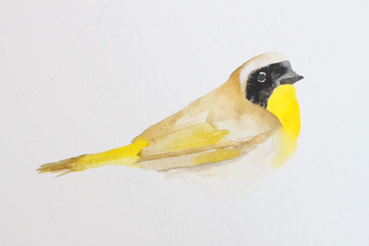 Gouache and Watercolor Bird Painting Tutorial: First Layer