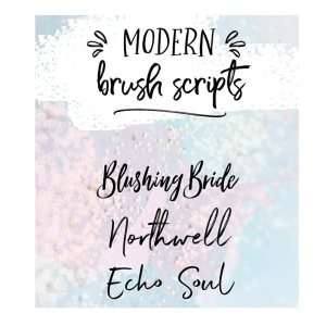 Oh my! Look at these swoon-worthy brush fonts that you can use for all your graphic needs. They're well made and makes my heart flutter and I hope they do the same to yours too. - Inkstruck Studio