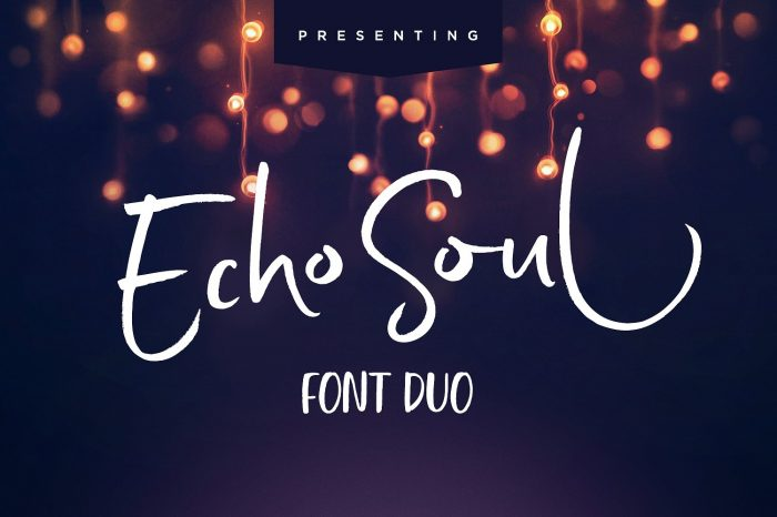 Echo soul brush font on Creative Market