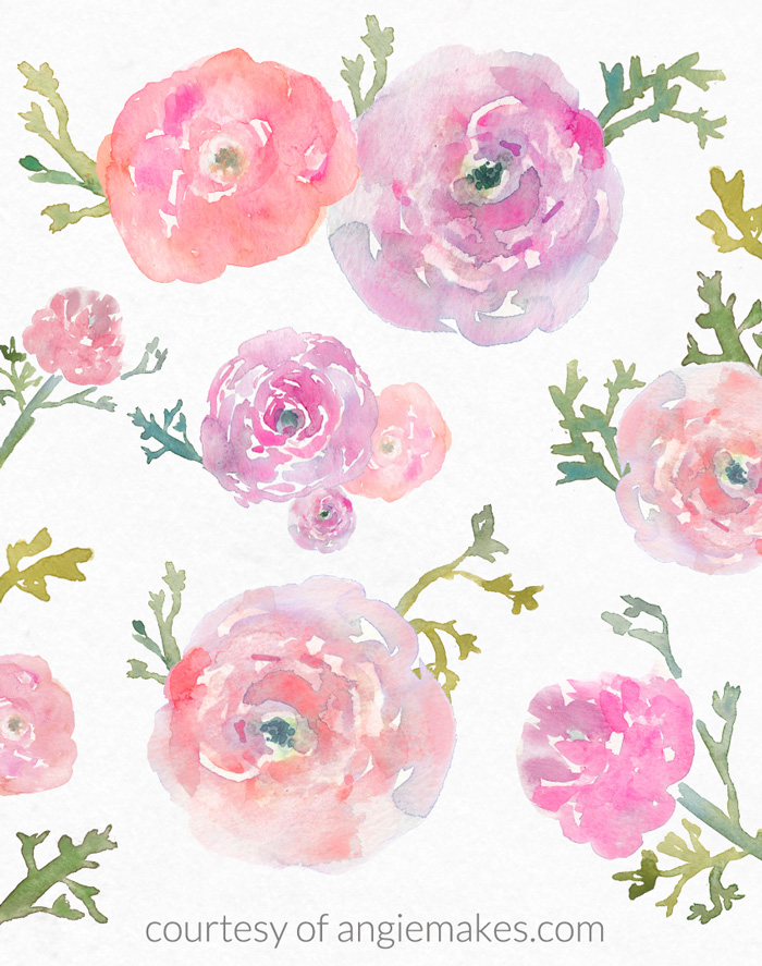 Free ranunculus watercolor graphics