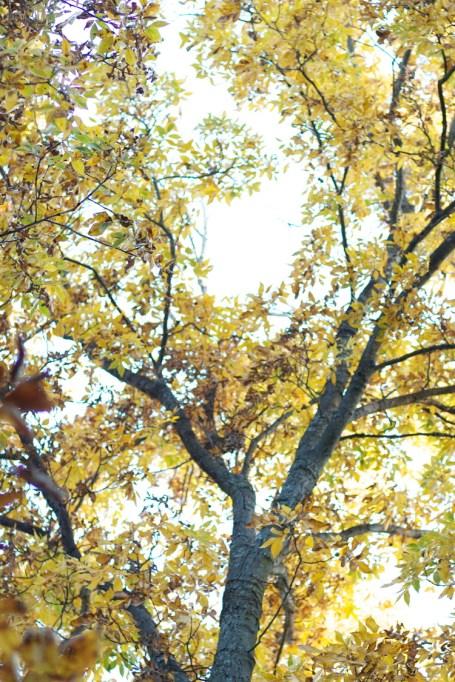 Autumn 2013 | ADVENTURE