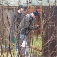 Snapshot: Repairs in the Rain