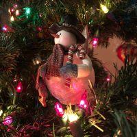Snapshot: Merry Christmas!