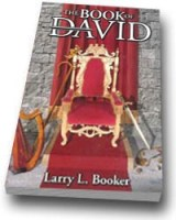 The First Book of David Audiobook (MP3 CD)