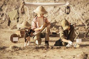 Campi estivi del piccolo paleontologo