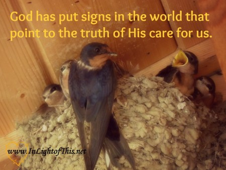 God has put signs in the world that point to the truth of His care for us.